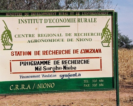 Cinzana research station - Mali